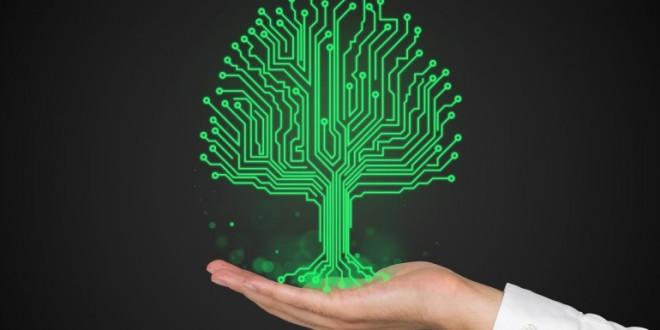 Bientôt on aura des plantes cyborgs