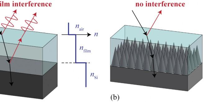 Les yeux de mites pourraient améliorer l'efficacité des cellules solaires