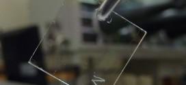 Le transistor organique rend l'électronique transparente