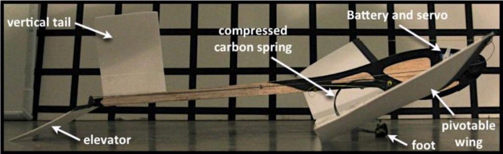 Les chercheurs ont créé un robot en forme de poisson volant