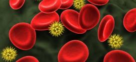 Les protéines du système immunitaire de l'homme peuvent supprimer le VIH